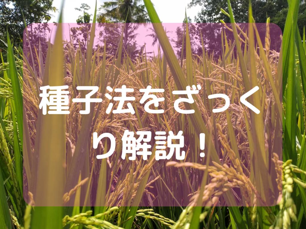 種子法をざっくり解説